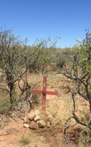 Death in the Arizona Desert, A Poem
