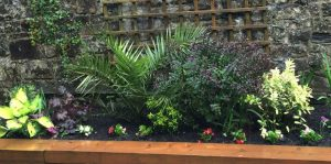 Reflective Garden opens in Celbridge
