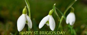 Happy St Brigid's Day